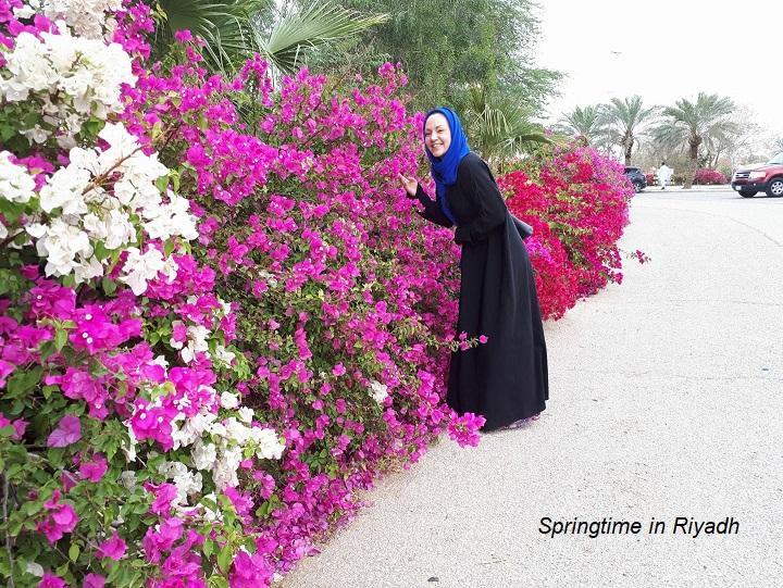 Spring time in Riyadh